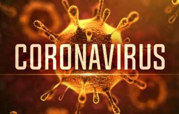 Koronavirus II.